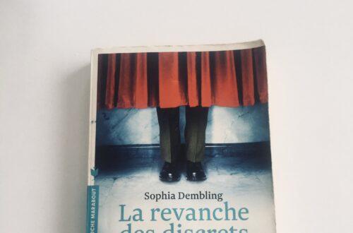 Article : Comprendre les introvertis avec La revanche des discrets, de Sonia Dembling