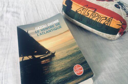 Article : Le Ventre de l'Atlantique, de Fatou Diome