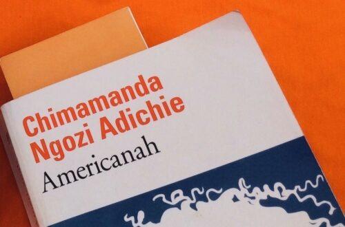 Article : Americanah, de Chimamanda Ngozi Adichie, mon coup de cœur