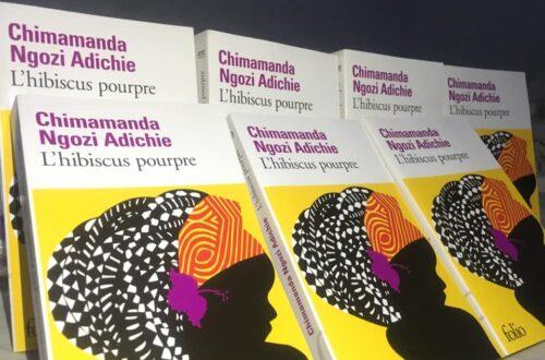Article : L'Hibiscus Pourpre de Chimamanda Ngozi Adichie